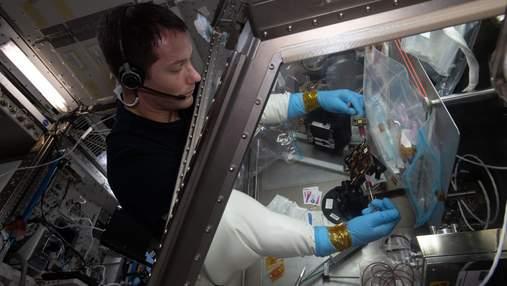 На МКС виростили тканини людського організму: для чого це потрібно