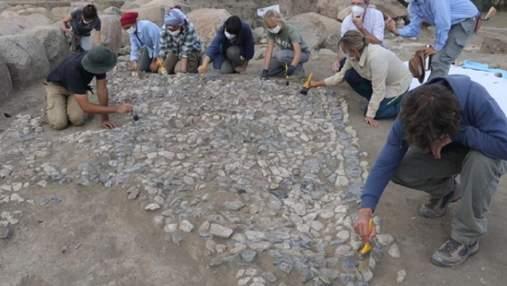 Найстаріша у світі: у Туреччині відкопали унікальну мозаїку – фото знахідки