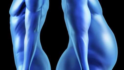 Вчені виявили 14 генів, які можуть викликати збільшення ваги, і ще 3, що здатні запобігти цьому