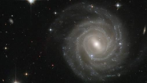 Чи може життя у Галактиці розповсюдитися природнім шляхом