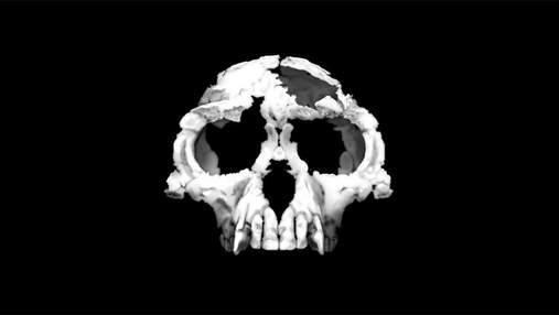 Найстаріші сліди гомінінів виявилися ще стародавнішими, ніж вважалося