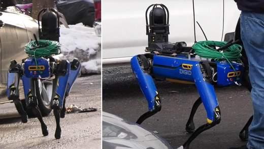 Полиция Нью-Йорка испытала робопса Digidog: каким было первое задание – видео